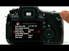 Canon EOS 60D Tutorial - Picture Style Operation 10/14 - YouTube