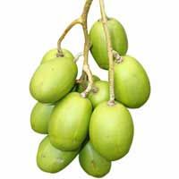 Ambarella fruit is an edible fruit in the tropical tree with crispy and juicy along with the fiber originates in south pacific used for diabetes. Fruit Plants, Fruit Trees, Fruit Nutrition Facts, Star Apple, Fruit List, Fast Growing Trees, Pineapple Fruit, Best Food Ever, Exotic Fruit