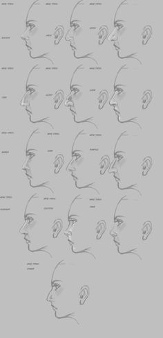 nose types - Google Search