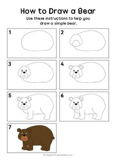How to Draw a Bear Instructions Sheet (SB11506) - SparkleBox
