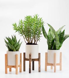 Mid Century Planter Stand Modern