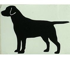 think we're going to do silhouettes of lab and beagle as paintings above bed with the dogs in blue!  here's the lab