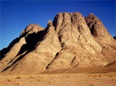 Mount Sinai                                                                                                                                                                                 More