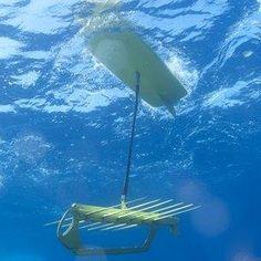 A swimbot!    http://www.bbc.co.uk/news/technology-17367984