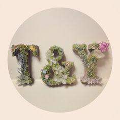 必須&定番のウェディング小物!可愛いイニシャルオブジェまとめ*にて紹介している画像 Wedding Welcome Board, Welcome Boards, Wedding Clip, Diy Wedding, White Shower, Crafty Craft, Wedding Images, Birthday Decorations, Dried Flowers