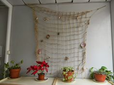 Nature brought indoors brings a soft and warm feeling to the third teacher Reggio Emilia Classroom, New Classroom, Classroom Design, Classroom Decor, Bulletin Board Design, School Decorations, Early Childhood, New Room, Ladder Decor