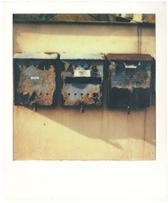 Polaroids by MH