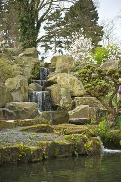 The waterfalls at RHS Wisley in Surrey.  The Wisley gardens are gorgeous throughout the year.