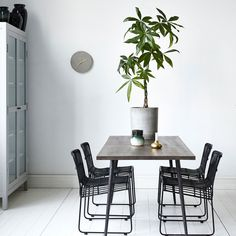 Un petit arbre en guise de centre de table
