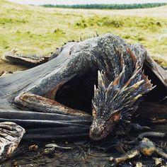 Dragon sleeping. Do not disturb. #WaitingForGOTSeason6 #DontWakeTheDragon…