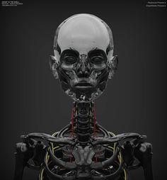 Ghost_SkeletonWork_09-07-2014_03.jpg