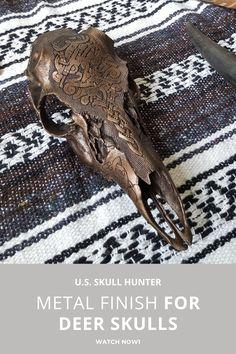 Deer Skull Art, Cow Skull Decor, Deer Skulls, Animal Skulls, Antler Crafts, Antler Art, Warrior Paint, Real Skull, Human Body Art