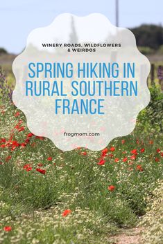 Lockdown hiking in rural Southern France during the spring 2020 COVID19 pandemic is an exercise in extreme proximity, in rediscovering the smaller things and local beauty. Such as quiet winery roads.