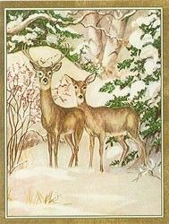 two deer in forest caspari christmas cards - Caspari Christmas Cards