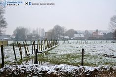 Sneeuwval in Hamme (januari 2015)
