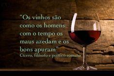 P.S.: A frase é ótima e faz muito sentido para a humanidade. Mas em termos de vinicultura é preciso lembrar o que diz o enólogo Jeffers... Wine Drinks, Alcoholic Drinks, Wise Quotes, Inspirational Quotes, Figure Of Speech, In Vino Veritas, Life Goes On, Red Wine, Easy Meals