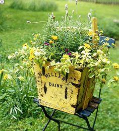 wildflowers in a vintage bin  // Great Gardens & Ideas //
