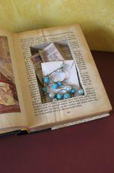 secret storage book