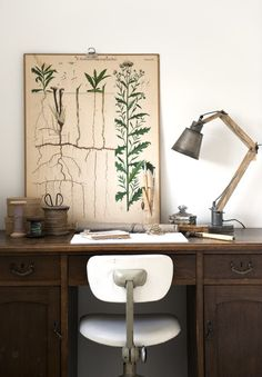 vintage desk and botanical print poster