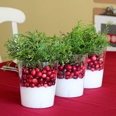 Follow these simple steps to create an easy and elegant cranberry centerpiece for your holiday table.