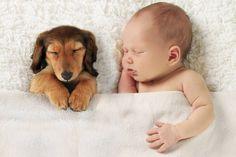 baby en hondje