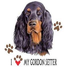 Love My Gordon Setter Dog HEAT PRESS TRANSFER for T Shirt Sweatshirt Fabric 860c #AB