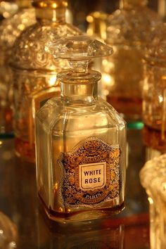 Timeless appeal of Guerlain's White Rose perfume, created 1890 Perfume Scents, Rose Perfume, Antique Perfume Bottles, Vintage Bottles, Parfum Guerlain, Beautiful Perfume, White Roses, White White, Deodorant
