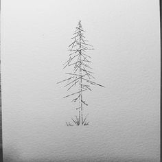 Ideas Pine Tree Tattoo Designs Art Prints For 2019 Tree Branch Tattoo, Pine Tree Tattoo, Tree Tattoo Designs, Tree Designs, Tattoo Ideas, Geometric Trees, Geometric Designs, Bonsai Tree Tattoos, Family Tree Poster