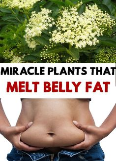 Although there is no magic formula to lose weight, besides a healthy lifestyle, you can try some natural remedies that help you to get rid of the belly fat