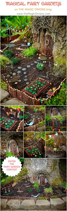 Come and see the most MAGICAL fairy gardens on The Magic Onions blog. This is the winner of the 2105 Fairy Garden Contest. Isn't it delightful!