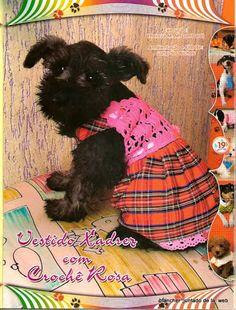 Moda pet 01 - Rosane Al - Álbuns da web do Picasa