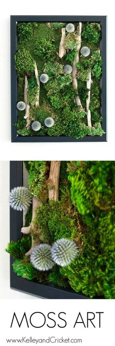 Wouldn't this gorgeous, life-like, and vibrant moss art look spectacular in you room or office? Best part of all is that this naturally preserved moss art work requires NO CARE at all! Moss Wall Art, Moss Art, Diy Wall Art, Plant Wall, Plant Decor, Air Plants, Indoor Plants, Indoor Gardening, Cactus Plants