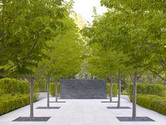 Ecomanta: Andrea Cochran: Modern Lanscape Architect of architectural landscapes