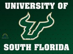 Google Image Result For Http Www Gatorpaper Com Images Wallpaper College Usf Usffabric 102 University Of South Florida Man Cave Area Rugs South Florida Bulls