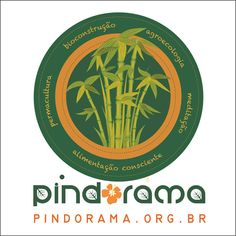 Instituto Pindorama, 12/16 a 06/17.