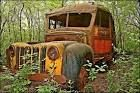 Rust, Age, Memories, components of being informed Art Informs So why do I have a special section for old rusted out cars on web site?  You don't find that type of collection everywhere See Reviews, Daily Comments, Stories: Under Misc Tab  RUSTED OUT CARS