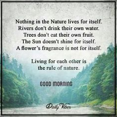65 Trendy Ideas for nature quotes adventure mother earth Wisdom Quotes, Words Quotes, Quotes To Live By, Sayings, Happiness Quotes, Time Quotes, Morning Quotes, Quotes Quotes, Great Quotes