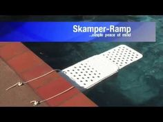 Skamper Ramp Animal Rescue Device for Swimming Pools