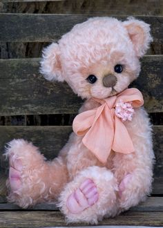 Adorable peachy Bliss, a Three O'Clock Bear