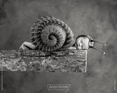 another Anne Geddes to melt the heart