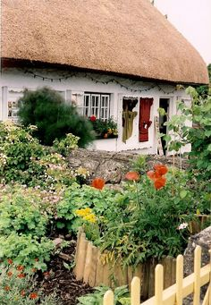 Ireland- My Grandma was born in a thatch-covered cottage like this near Galway  in 1897 & it still stands  :-)