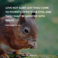 Bible Qoutes, Encouraging Bible Verses, Prayer Quotes, Bible Scriptures, Quotations, Word Of Faith, Word Of God, Good Morning Animals, Proverbs 20