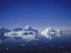 Icebergs, Antarctica, Polar Regions Indie Music, Antarctica, Photographic Prints, Music Videos, Art Prints, Islands, Poster, Photography, Travel