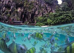 Поплавать с экзотическими рыбками на острове Пода в Таиланде