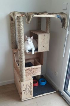 HomelySmart | 15 Mind-Blowing Cat Houses Your Cat Needs - HomelySmart
