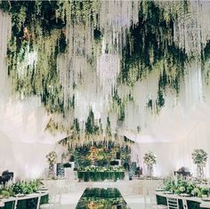 "Wedding Venues ""We are charmed by this enchanted forest theme wedding decoration! Major crush on the incorporation of stunning crystal chandeliers, hanging wisteria and…"" - Wedding Goals, Wedding Themes, Wedding Designs, Outdoor Wedding Theme, Asian Wedding Venues, Indoor Wedding Decorations, Wedding Cakes, Luxury Wedding Decor, Aisle Decorations"