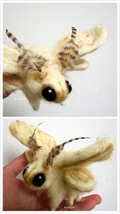 poodle moth by petskin Beautiful Creatures, Animals Beautiful, Cute Animals, Venezuelan Poodle Moth, Silkworm Moth, Cute Moth, Cute Drawlings, Moon Moth, Bee Illustration