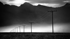powerlines in black and white