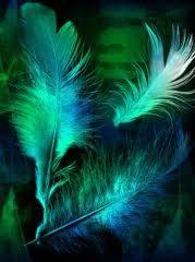 Colors ~ Blue and Green Peacock Colors, Green Colors, Color Blue, Ballet Russe, Aqua, Teal, World Of Color, Jewel Tones, Blue Tones