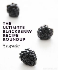 The Ultimate Blackberry Recipe Roundup - 75 Tasty Recipes to Try | Creature Comforts Blog